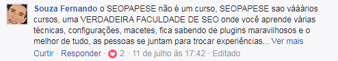 seopapese vale a pena