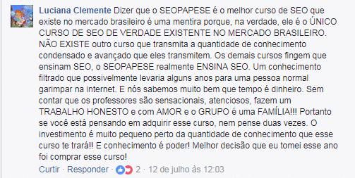 seopapese 2.0 funciona